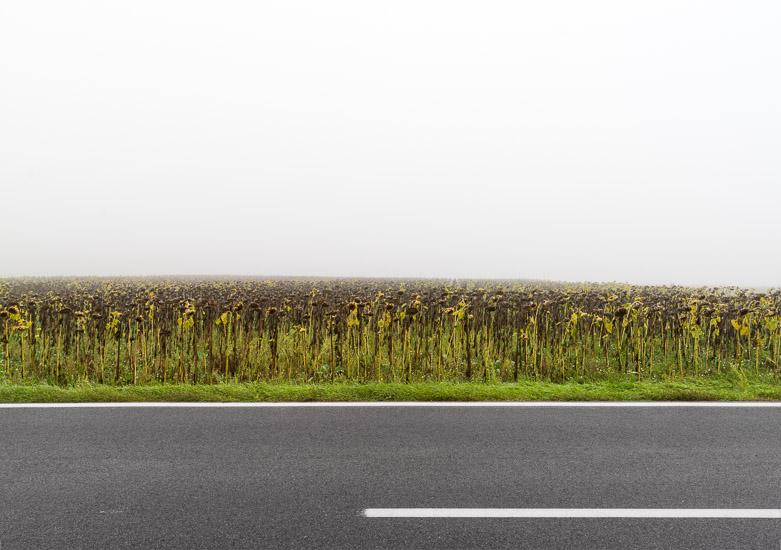 http://www.thomasebruster.com/files/gimgs/15_fog-17.jpg