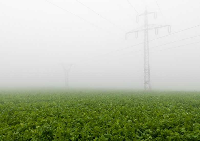 http://www.thomasebruster.com/files/gimgs/15_fog-2.jpg