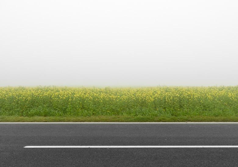 http://www.thomasebruster.com/files/gimgs/15_fog-4.jpg