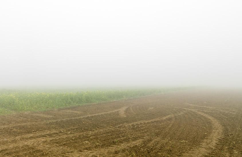 http://www.thomasebruster.com/files/gimgs/15_fog-5.jpg