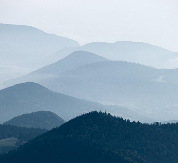 http://www.thomasebruster.com/files/gimgs/19_landscapesummer-9.jpg